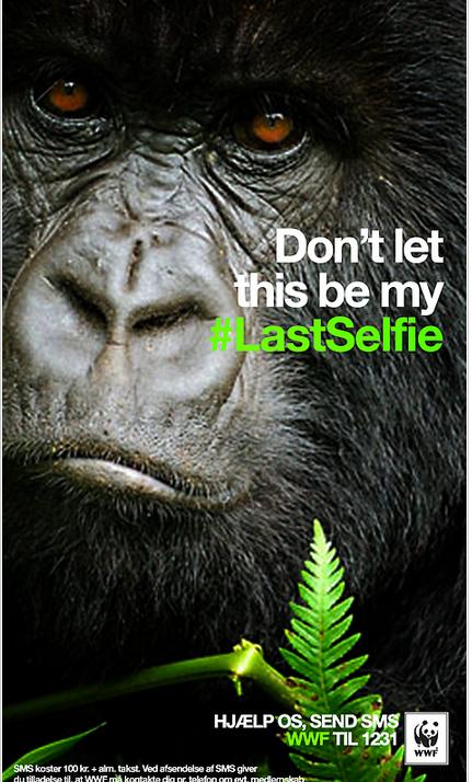 WWF Denmark   LastSelfie